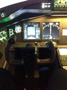 simulateur-vol-Flight-Adventure-Strasbourg-107